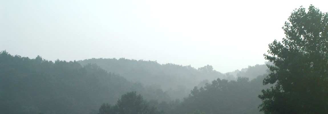 banner-morning-mist