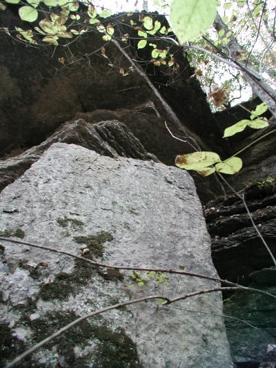 A huge slab of rock marks the eastern border of the Preserve along Cox Branch.